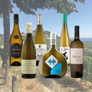Bijzondere wijnen